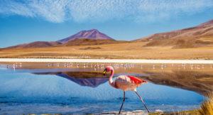 sentiers battus au Chili